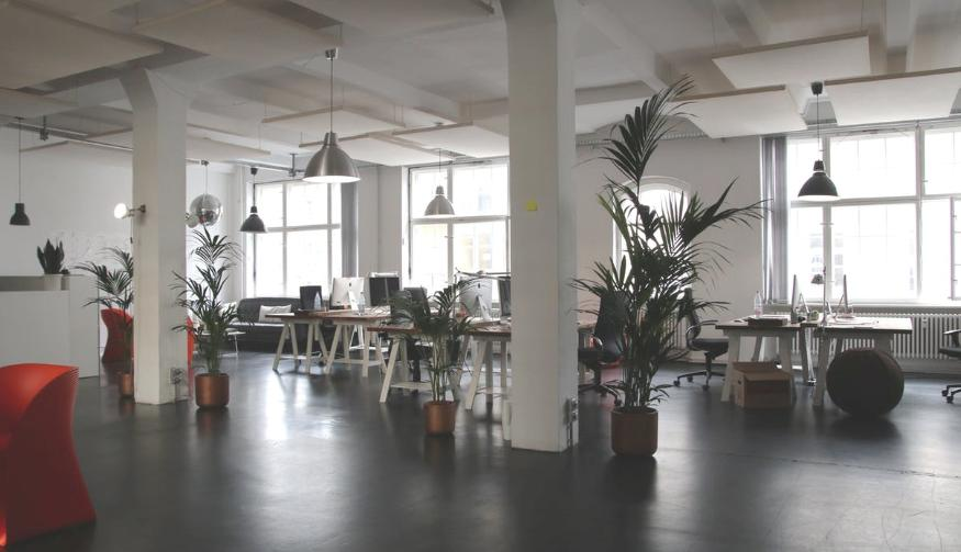 Office with commercial lighting